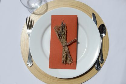 SimuLinen Signature Colored Terracotta Dinner Napkins