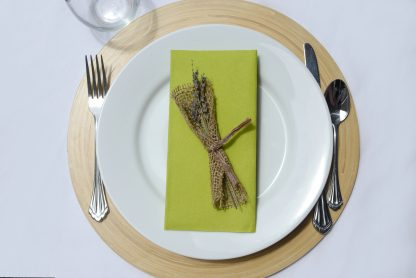 SimuLinen Signature Colored Kiwi Green Dinner Napkins
