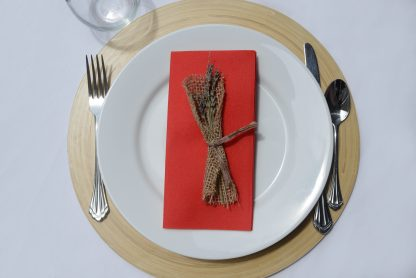 SimuLinen Signature Colored Red Dinner Napkins